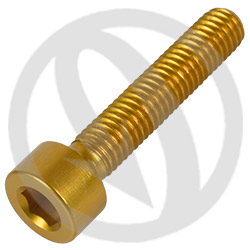 001 bolt - gold ergal 7075 T6 - M5 x 25 (Lightech)