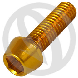 001 bolt - gold ergal 7075 T6 - M6 x 20 (Lightech)