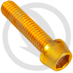 001 bolt - gold ergal 7075 T6 - M6 x 25 (Lightech)