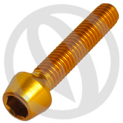 001 bolt - gold ergal 7075 T6 - M6 x 30 (Lightech)