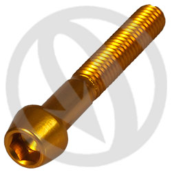 001 bolt - gold ergal 7075 T6 - M6 x 40 (Lightech)
