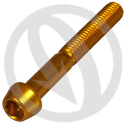 001 bolt - gold ergal 7075 T6 - M6 x 45 (Lightech)
