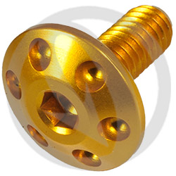 Screw FOR