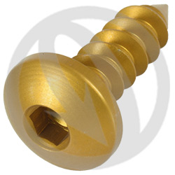 PAC3 screw - gold ergal 7075 T6 - 4.9 x 16