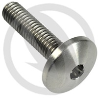 T003 screw - titanium grade 5 - M6 x 10